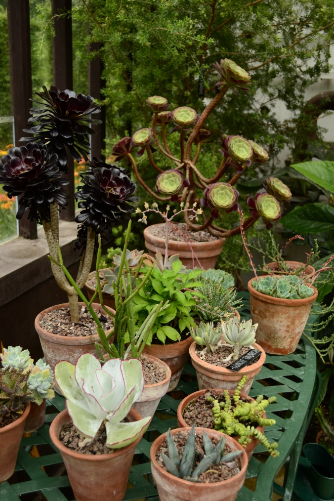 Hidcote Manore Gardens