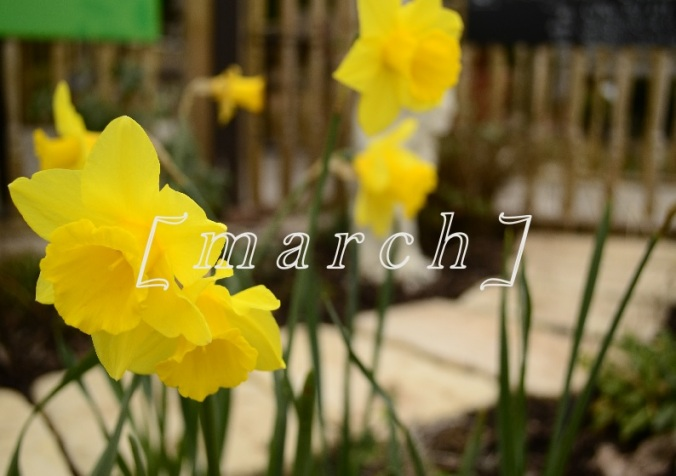 3-march