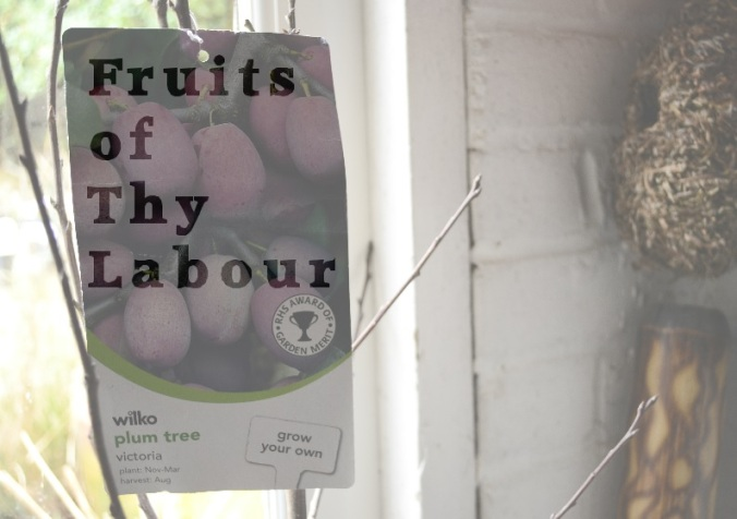 fruits-of-thy-labour